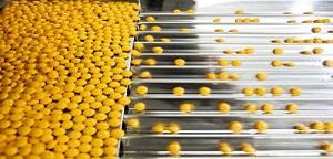 6 ways to increase quality and productivity in pharmaceutical manufacturing | COPA-DATA